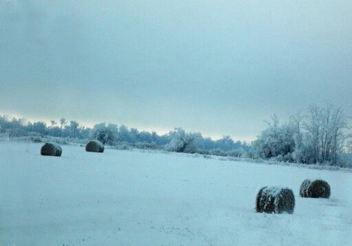 Snowy Field, Fort McMurray, AB