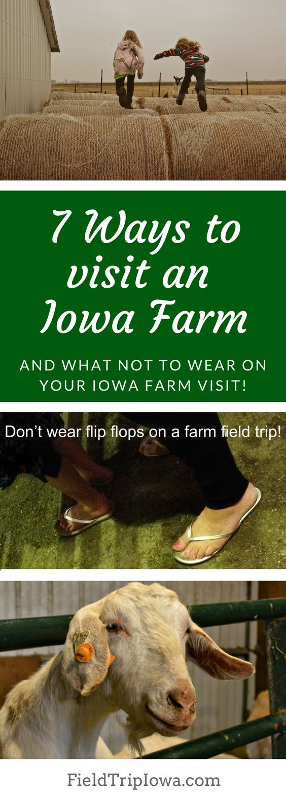 7 Ways to Visit an Iowa Farm and What Not To Wear. Every student in Iowa should have the opportunity to hug a goat and walk in a crop field. http://fieldtripiowa.com/visit-an-iowa-farm/