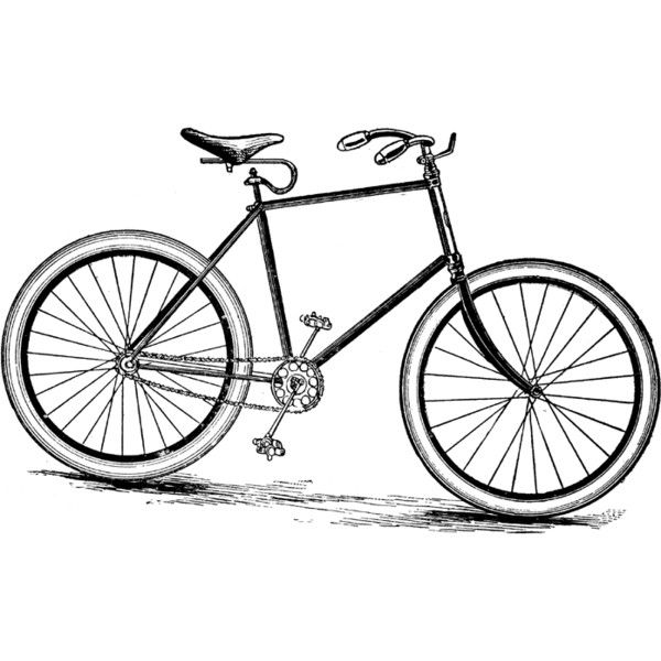 Bicycle Clipart ❤ liked on Polyvore featuring backgrounds, sketches, fillers, bikes and drawings
