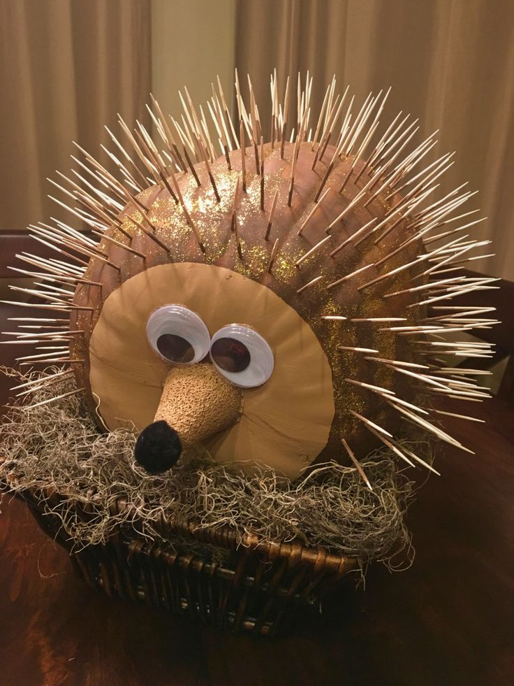 hedgehog no carve pumpkin decoration Google Search