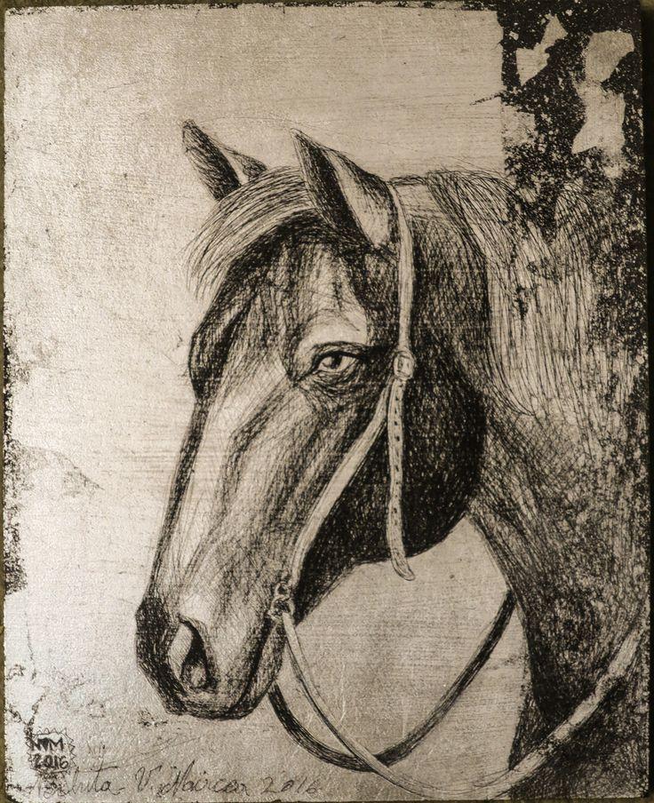 Cal.portret.studiu.foita metalica argintie gravata