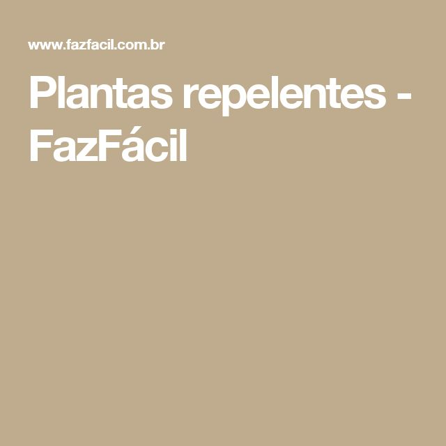 Plantas repelentes - FazFácil