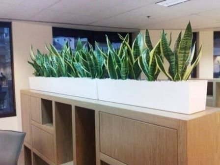 White Cabinet Planter Boxes by Paul Pph on 500px#planthire #sydney #plantrental #indoorplanthire #office planthire