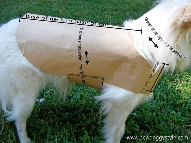 Sew DoggyStyle: DIY Pet Coat Pattern So, what do you need to make this pattern?  How about nothing but a paper bag, a pen, a ruler, and some scissors.  Oh, and a dog.  First things first when making a pattern...the measurements.