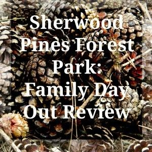 Review of a Family Day Out at Sherwood Pines Forest Park, Nottingham