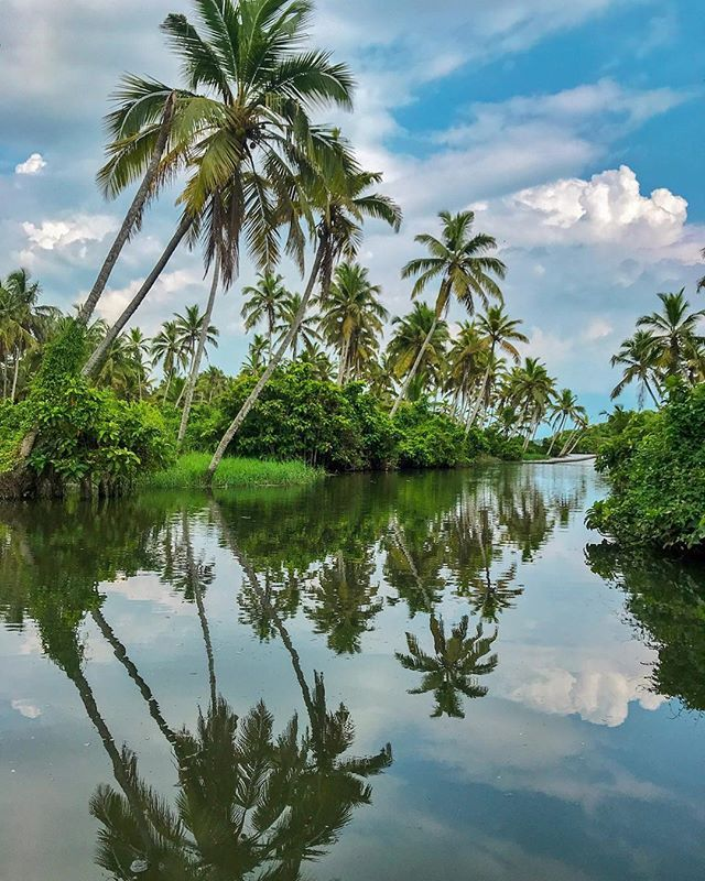 Did You Know That Kerala Means Land Of Coconut Trees Kera Coconut Tree Alam Land I Wonder Why It Background Images For Editing Kerala Travel Bugs