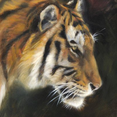 Wildlife art by artist Marjolein Kruijt