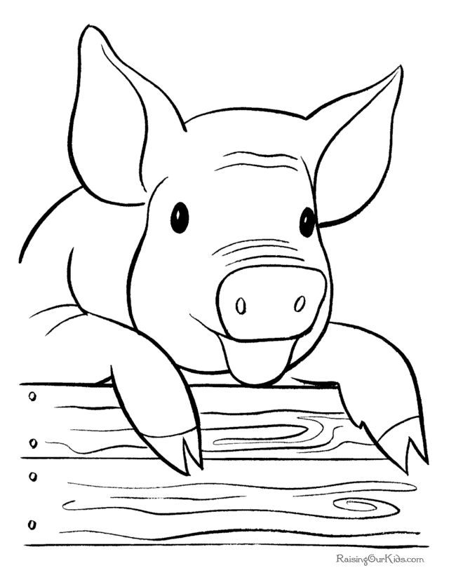 Pig Horse Chicken Laughing Funny Coloring Pages To Print Coloring Pages