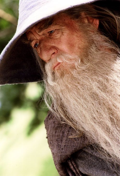 the lord of the rings - gandalf