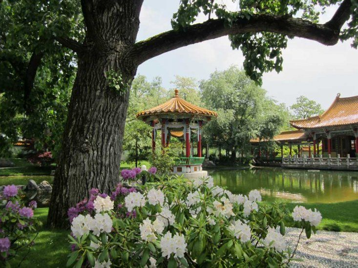 Chinese Garden | What to see | Zurich