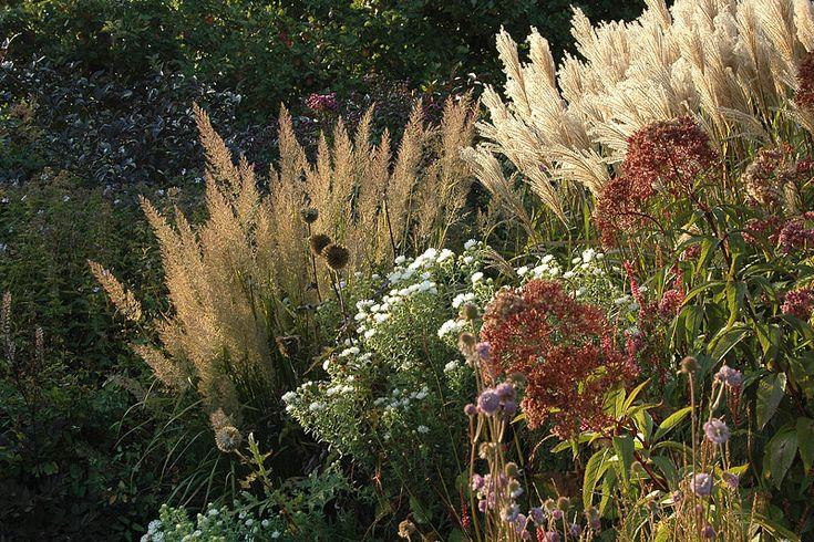 Kwekerij In Goede Aarde, Borderplanten Grassen Privé tuin (Zeeland)