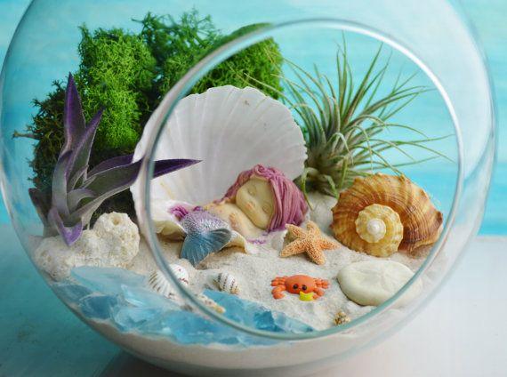 Little Mermaid Terrarium Kit 2 AirPlants by BeachCottageBoutique
