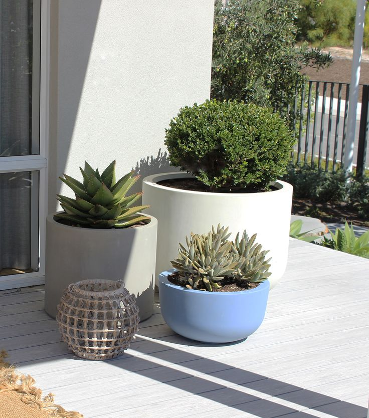 395 Best Pots Planters And Urns Images On Pinterest
