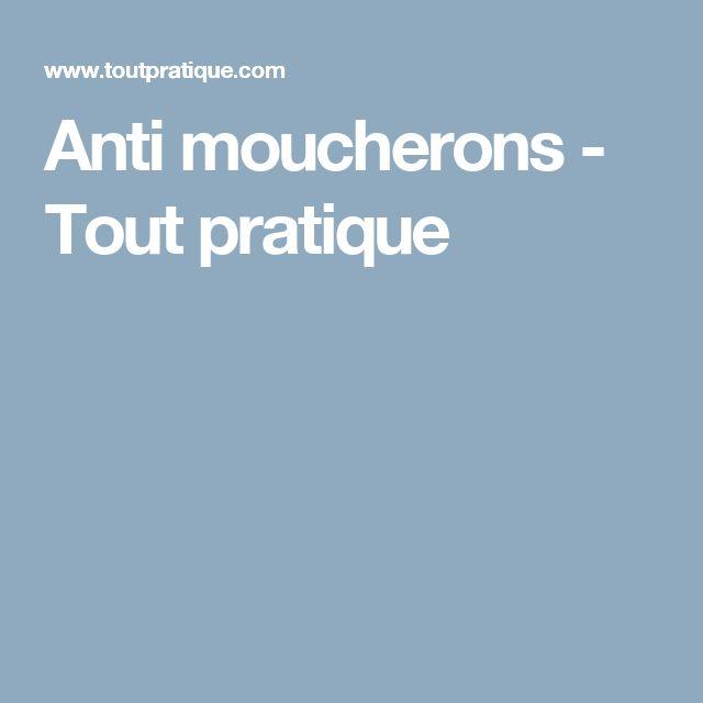 Anti moucherons - Tout pratique