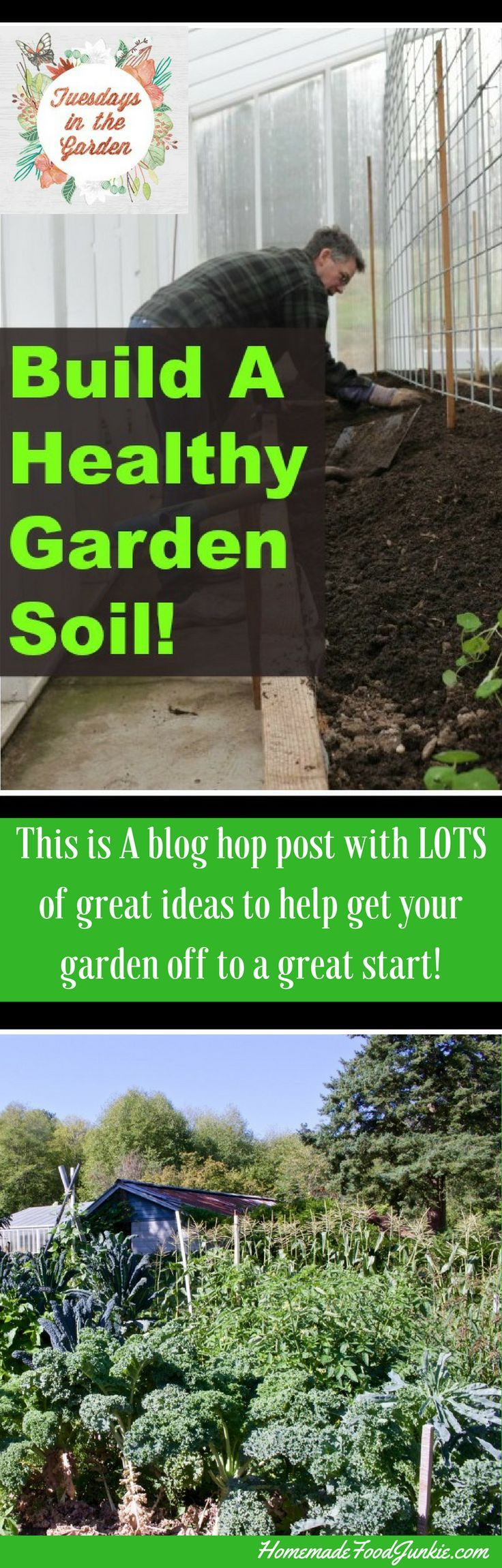Build a Healthy Garden Soil to get your garden off to a good start. This blog hop has lots o tips for good garden techniques that will help you out!