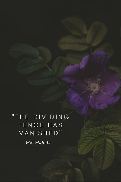 Everything Has Changed (Except Graves) By Mzi Mahola - the dividing fence has vanished
