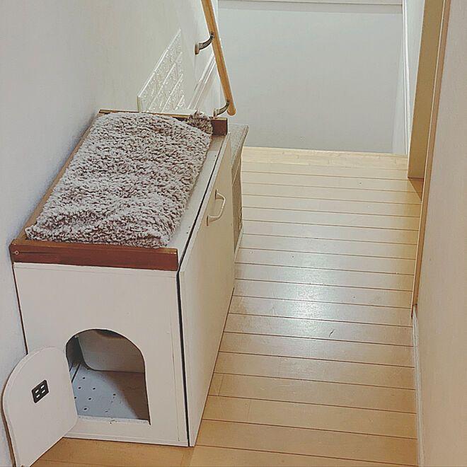 カラーボックス Diy 猫トイレカバーdiy ニャンともと暮らす ねこと暮らす ニャンとも清潔トイレ などのインテリア実例 2020 04 16 18 55 01 Roomclip ルームクリップ カラーボックス Diy 猫 トイレ 猫