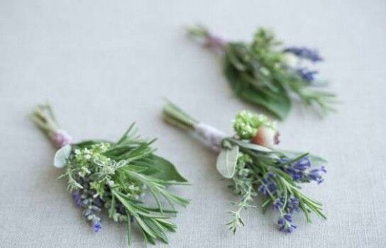 Herb and lavender buttonholes