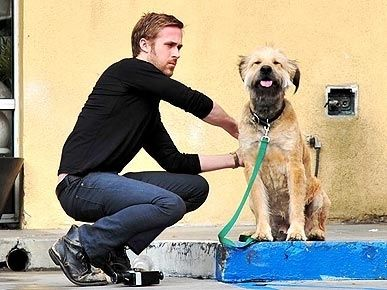 Ryan gosling and his dog George