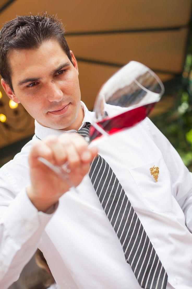 Examen de la robe du vin
