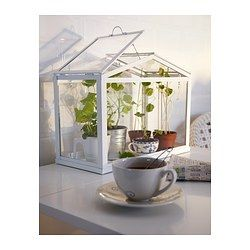 this is actually an awesome idea! i can start my plants in the green house so the cats wont eat them before getting started :D SOCKER Greenhouse - IKEA