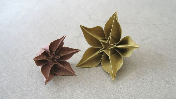 Origami Instructions: Carambola (Carmen Sprung). difficult but clear instructions in english