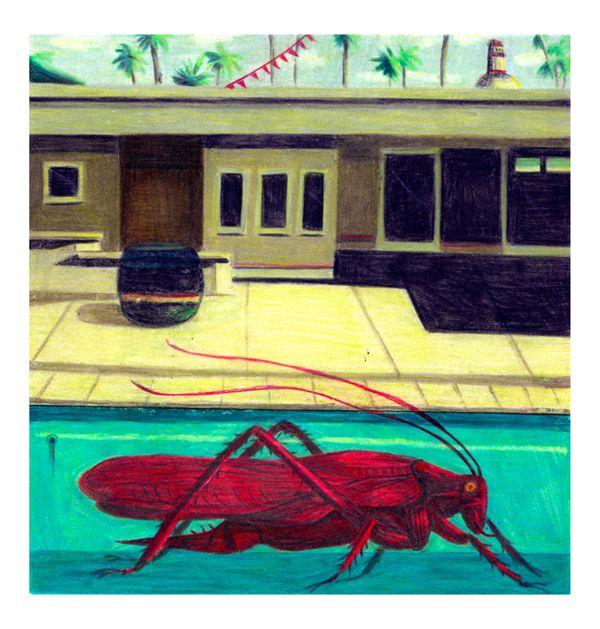 Empty Pool by Dexter Maurer, via Behance