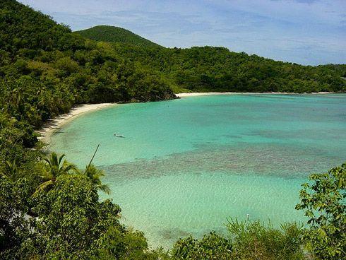Hawksnest Beach, St. John: Hawksnest Bays, Da Beaches, Clearest Water, Favorite Places, Hawksnest Beaches, Places I D, Lynn Lewis, Ashley Lynn