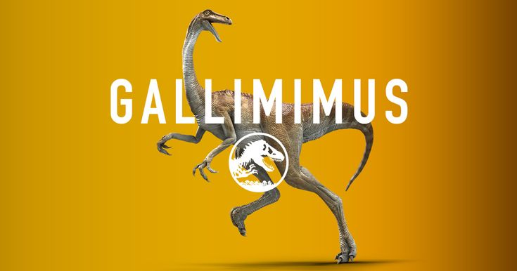 """These speedy dinos have a large head with a toothless beak. Though their name means """"rooster mimic"""", they're much more like dinosaur ostriches—that can run as fast as cheetahs! Gallimimus hang out in flocks and can be found in the park in Gallimimus Valley."""
