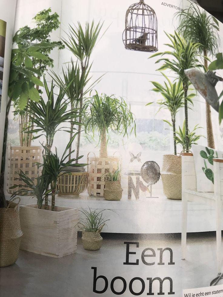 15 best Huiskamer images on Pinterest | Bedroom, Corner shelving ...