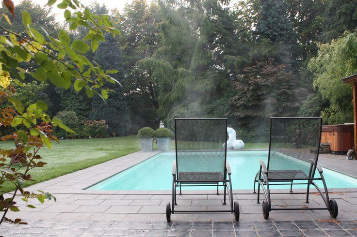 Zwembad hout beton siergrind siergras outdoor decoratie zwembad