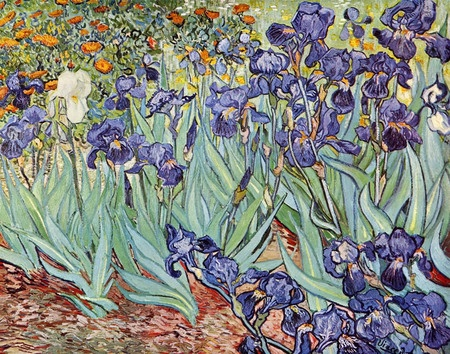 Cuadro Irises de Vincent Van Gogh.: Vincent Of Onofrio, Oil On Canvas, Vincent Vans Gogh, The Angel, Getty Museums, Vincentvangogh, Van Gogh, Gogh Iris, Flower