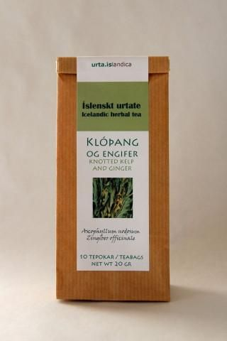 Icelandic herbal tea. Knotted kelp and ginger. Ascophyllum nodosum is a large, common brown alga (Phaeophyceae) in the family Fucaceae, being the only species in the genus Ascophyllum. It is seaweed of the northern Atlantic Ocean, also known as rockweed.