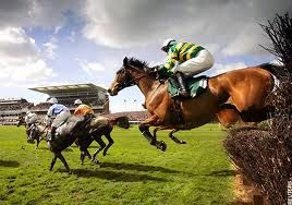 Tbe most gruelling race in the world the Aintree Grand National Horses