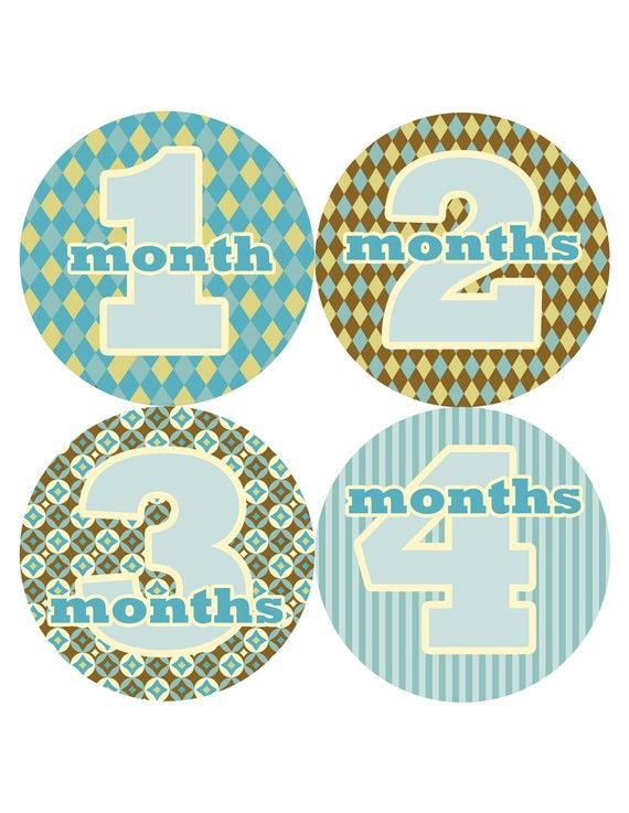Baby Monthly Baby Stickers Baby Month Stickers by PurplePossom, $9.00