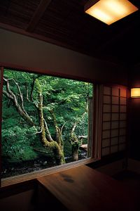 Japanese window view