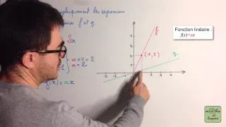 fonction linéaire - YouTube