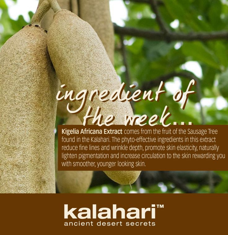 Health and Skin Care Productswww.kalaharilifestyle.com  www.facebook.com/kalaharilifestyle