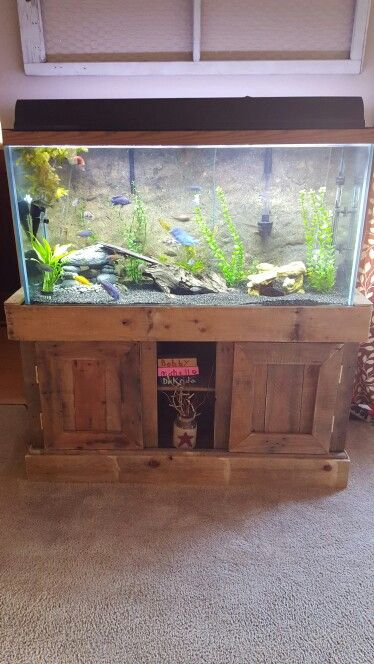 92 best images about akwarium on pinterest aquarium for Build your own fish tank