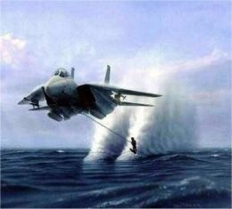 Gotta overcome your fears somehow... What better way than this?Lakes Powell, Military Aircraft, Airplanes, Air Force, Water Sports, Jet Ski, Fighter Jet, F14 Tomcat, Us Military