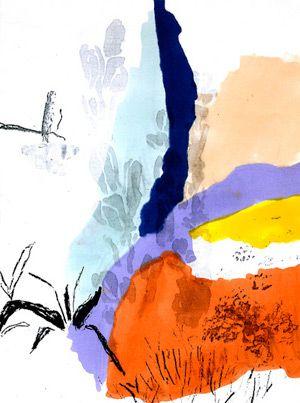 Alicia Galer's botanical illustration