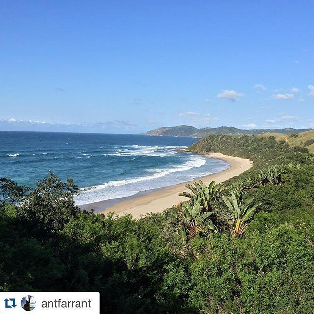 #Repost @antfarrant with @repostapp. ・・・ Beautiful Wild Coast #wildcoast #umngazi #nofilter #hike  #Africa #southafrica #easterncape #ocean  #sea #sunshine #nature #travel #instatravel #travelgram #mytravelgram #picofday