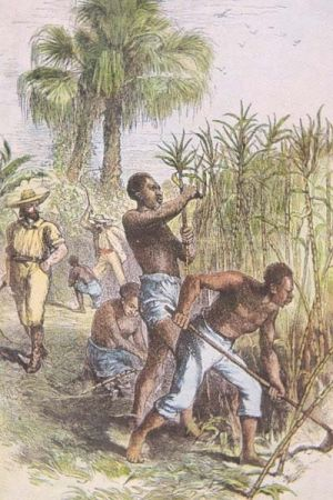 caribbean economy and slavery the west The slaves also fought back, but not ever in a british colony, were slaves successful in a resistant action against planters when slaves slipped up or fought back, the real wrath of the planters was unleashed.