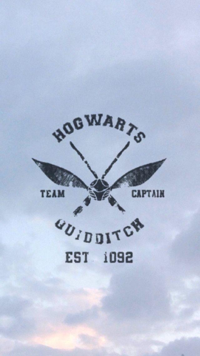 Qudditch is the Best