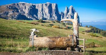 Seiser Alm – Urlaub auf dem größten Hochplateau Europas