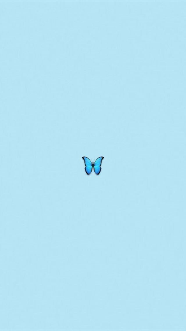 Aesthetic Iphone Wallpaper Blue Butterfly Wallpaper Butterfly Wallpaper Iphone Butterfly Wallpaper