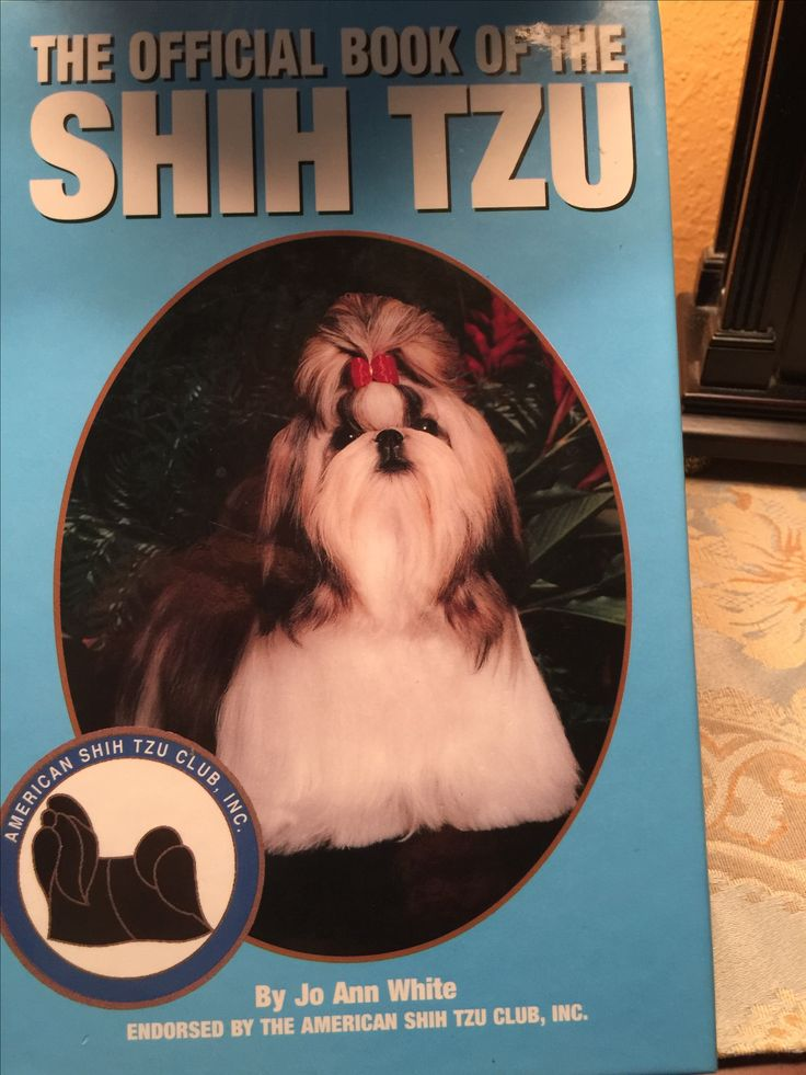Author & friend. JoAnn White   Jo Ann was in Shih Tzu's before they were recognized as an AKC breed.