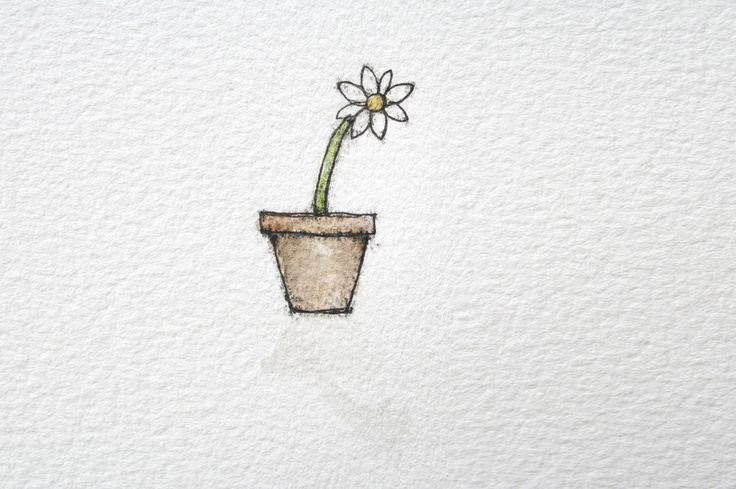 Sunday Chutney's potted daisy shadow illustration for Aaron Blabey