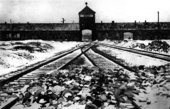 Giornata della Memoria ganha destaque em programação do Ciclo de Cinema Italiano nesta terça-feira. Para relembrar o Holocausto do povo judeu durante a Segunda Guerra, evento exibe um dos principais filmes contemporâneos sobre o tema. Entrada franca. Em decorrência da Giornata della Memoria, celebração anual que relembra o Holocausto nazista que perseguiu e exterminou cerca…