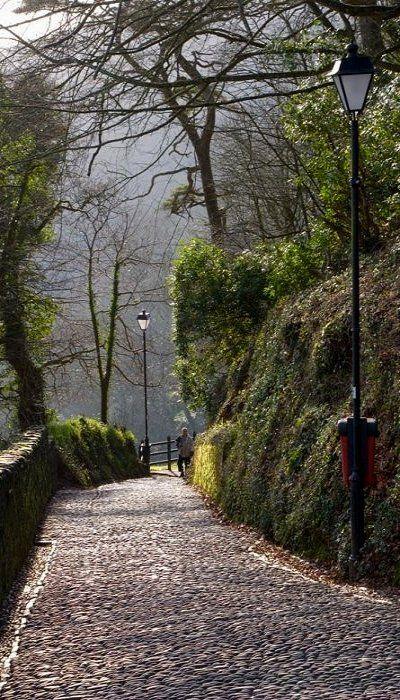 Path Down to Clovelly, Devon, England